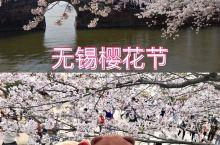 2020年无锡樱花节游玩最全攻略