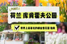 郁金香花园游玩指南
