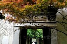 《来自苏州的诱惑:我真的想要去旅游……》  我是孤独浪子,希望我的拍拍让您有所收获。 漫游神州31载