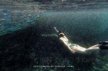邦劳岛·薄荷岛 自由潜在最近几年真的是大,很多人都是被美美的水下视频迷倒。自由潜教学机构越来越多,那