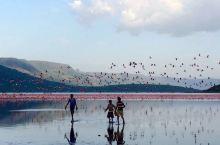 十分想念肯尼亚的湖光山色和那里的朋友
