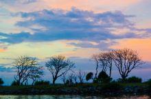 KAWA红树林是亚庇三大红树林路线之一(其余两条分别是Klias红树林以及Weston红树林),以滩