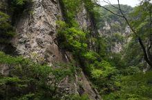 太白山森林公园