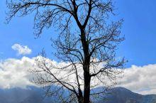 又被称冶勒水库,位于四川冕宁县冶勒乡,属冶勒自然保护区。因海拔2600多米而拥有高原湖泊的风光。再加