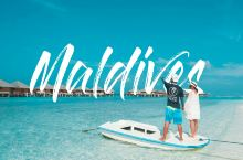 马富施 | 马尔代夫超小众海岛独特之旅:追海豚、戏护士鲨、与最大鱼类鲸鲨共游  马尔代夫给人的感觉是