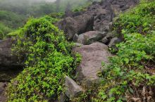 覆卮山上石河 大自然美好的产物 不可攀爬