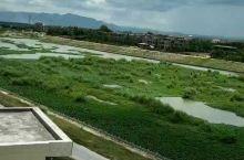 利国的河,一路绿油油的,给人的感觉格外的舒服。