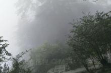 空山新雨后……