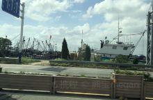 南通,港口城市! 海鲜便宜,看看风景!