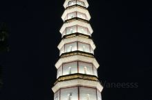 宝光塔,位于广东高州市区西南部的鉴江河畔上,建于明代万历四年。该塔为八角九层楼阁式砖塔,通高 65.