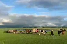我们呼伦贝尔草原的宁静、自然、纯真,能把人带进一个世外的神圣世界。在辽阔无边的草原上,快活的打闹戏耍