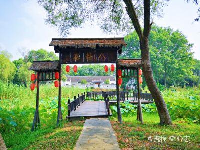 Honghu Eco-Tourism Scenic Area