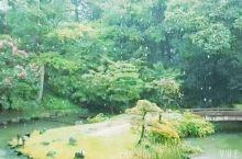 小仓城的美不只是一条街一个城,能静静的坐在Japanese garden看雨意境超级美