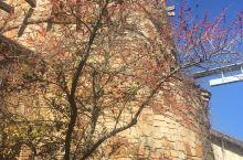 野花中心属于美国著名的德州大学奥斯丁分校,由约翰逊夫人捐赠。学校师生可以免费参观,也欢迎民众前来参观