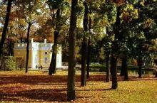 俄罗斯之秋 忧郁的季节啊!真是美不胜收! 你那临别时的姿容令我心旷神怡...... 我爱大自然凋萎时