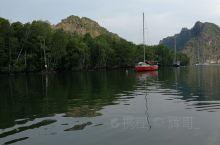 兰卡威红树林的包船游览。可以喂老鹰,最刺激的是猴子跳上船来找吃的