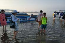 海豚湾之四-菲律宾宿雾海豚湾名不虚传! 今年暑假在菲律宾宿雾,看海豚绝对是我们此行最大的收获之一!