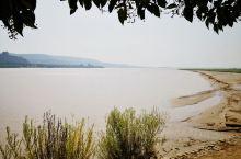 开车差不多三小时,秋天黄河边上走走,感受母亲河的平静
