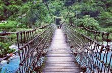 入住瑞穗温泉后,邻近的一个森林公园,不算大,大长腿往返路程约1个钟。  绿化感人,全程深呼吸,友人说