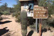 听本地华人介绍到凤凰城最好到McDowell Mountian游玩,感受一下大沙漠。一早去,7刀门票