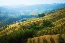 桂林山水甲天下… 龙脊梯田震撼的美,美出高度…不虚一行