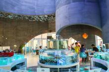 走进这家餐厅就有一种海底世界的感觉,挑高够光线充足,加上炫彩的海洋吊灯群,特别温馨,包厢、大堂都很别