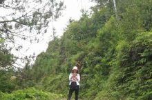 广东省茂名市信宜龙耕茶油基地,爬到山顶,喝口茶,就要下地采茶籽去啦!