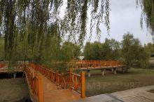 7点半的曹县公园