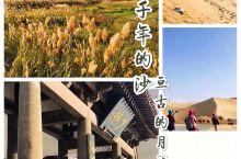 三千年的沙-鸣沙山月牙泉  到过鸣沙山,才知道以前的沙漠都白去了!这是甘肃旅游的必去之地,离敦煌城不