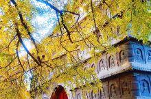 《北京真觉寺~金秋醉美画卷》