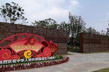 南京市郊区汤山矿坑公园的粉黛子是南京最大规模的粉黛拍摄地点!每年11月中旬,是粉黛花开的季节!从中山
