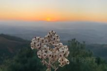 在距离昆明80多公里的地方,有个县城叫寻甸,在寻甸有座最高的山叫凤龙山。 寻甸·昆明