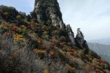 木札岭风景区位于洛阳市嵩县车村境内,是国家级4A景区。属伏牛山国家级自然保护区,河南省首家原始生态旅