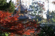 五彩斑斓习家池2:作为正在建设中的岘山风景名胜区的一部分,习家池的知名度在逐渐提高,除本地游客将习家