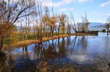 洱海月湿地公园看洱海,从不同角度欣赏冬日洱海!