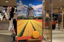初到阿姆斯特丹,住宿宜必思酒店,有方便的往返穿梭巴士,时刻表就在出机场的右边。早餐也很丰盛,房间小巧