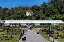 惠灵顿植物园花房 惠灵顿植物园花房在Botanic公园边缘,离海港不远,是个玻璃暖房,房前是Norw