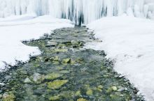 一场冬日的小雪之后,银川浸没在淡淡的雾中,在银川贺兰山岩画,高处的雾让山上的树木披上一层洁白的羽衣,
