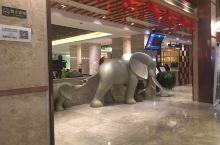 大象是什么象征呢?