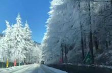 雪域神农架,风景总在路上!一路美景尽在眼底!