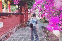 蒲甘适合慢旅行·慢生活,看太阳从千万佛塔升起。 春季的缅甸是干季,茂盛的粉白桃色三角梅搭配佛性的塔寺