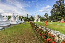 松德寺Wat Suan Dok位于清迈古城西门外,虽然路上车水马龙,但寺内却非常安静,就像一处世外桃