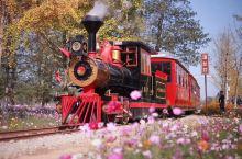 【湖州@长兴八都岕景区】     位于湖州市长兴县小浦镇的八都岕景区,现己成为观赏银杏秋景热门地方了