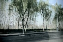 春暖花开微山湖