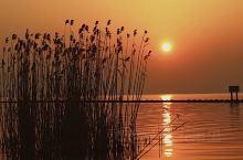 苏州太湖西山东山景点旅游—枇杷季  推荐理由:每年五月,钟爱枇杷的老铁们,千里奔袭,只为吃一顿。其实