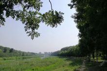 温榆河湿地公园