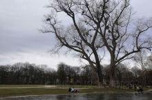 二零二零年二月十六号今天星期天,气温十四度左右。天气这么好没有理由不出去走走。 慕尼黑·巴伐利亚自由