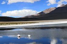 乌尤尼三天两夜团,火山盐滩碧湖火烈鸟