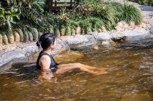 自驾去这座低调的温泉小城,看完你就想出发! 嘉鱼山湖温泉位于湖北省嘉鱼县风景优美,空气清新的三湖连江
