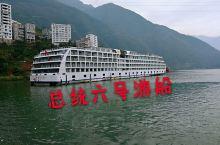 长江游船总统6号 船身长135.2米、宽19.6米,上下六层,总吨位12000吨,船身尺寸已达到三峡